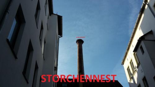 Storchennest