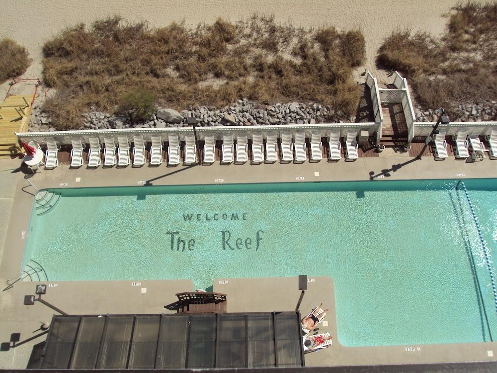 Gallery image of The Reef at South Beach