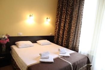 Mini hotel Demidov