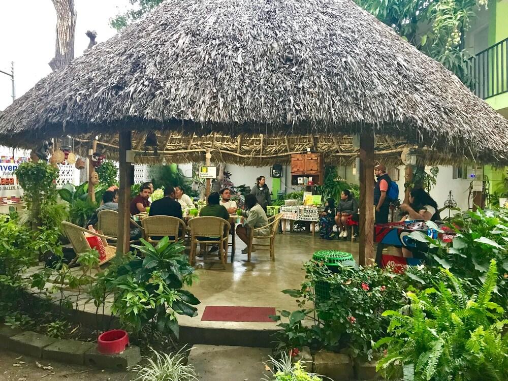 Gallery image of Hostal Casa Huasteca