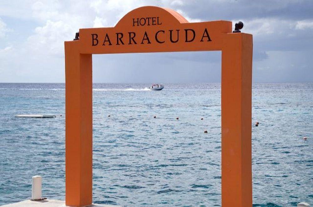 Gallery image of Hotel Barracuda