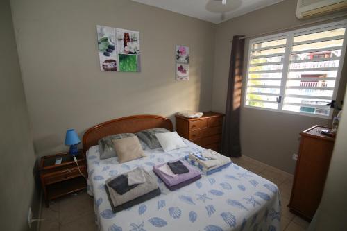 Appartement T2 Balisier