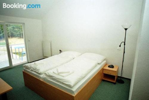 Gallery image of Motel Dacice