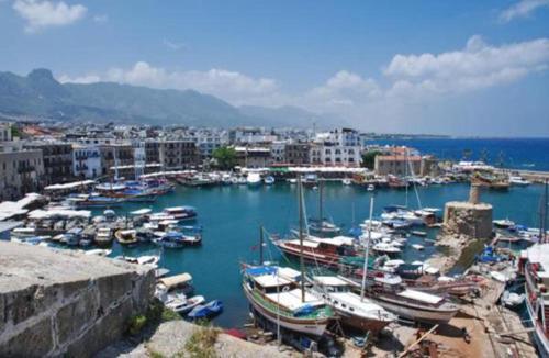Seasa Boat Tours