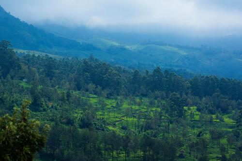Gallery image of Mount View Munnar