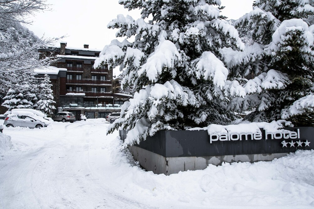 Gallery image of Hotel Palomé