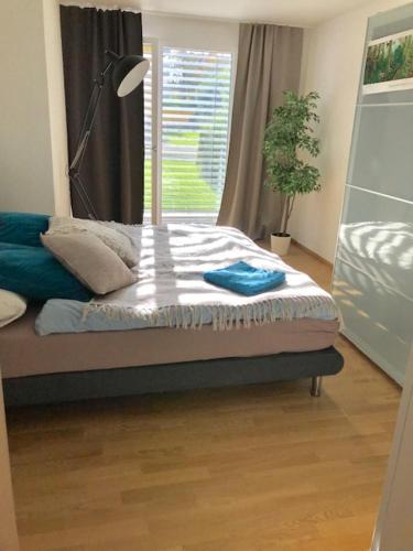 Cozy & NEW apartment close to Airport & Zurich Center