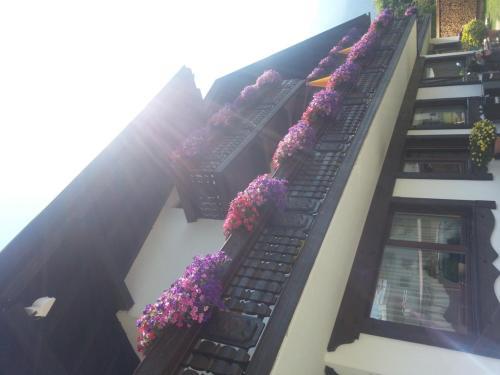 Gallery image of Hotel Garni Dietrich