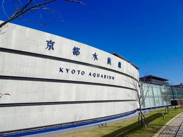 Gallery image of Guest Inn Kyoto