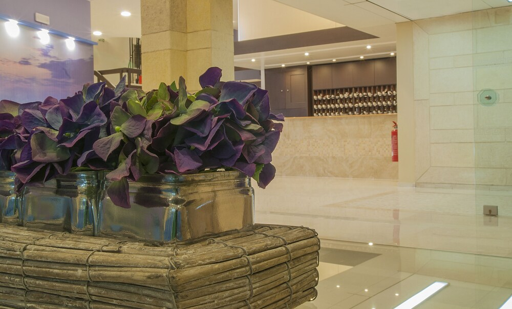 Gallery image of Europa Hotel