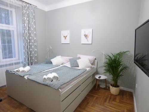 Nice apartments Zamenhofa