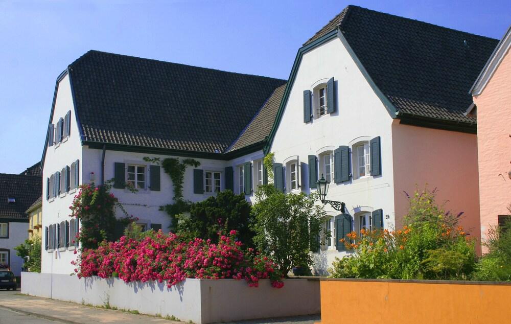 RheinRiver Guesthouse Boutique Art Hotel am Rhein