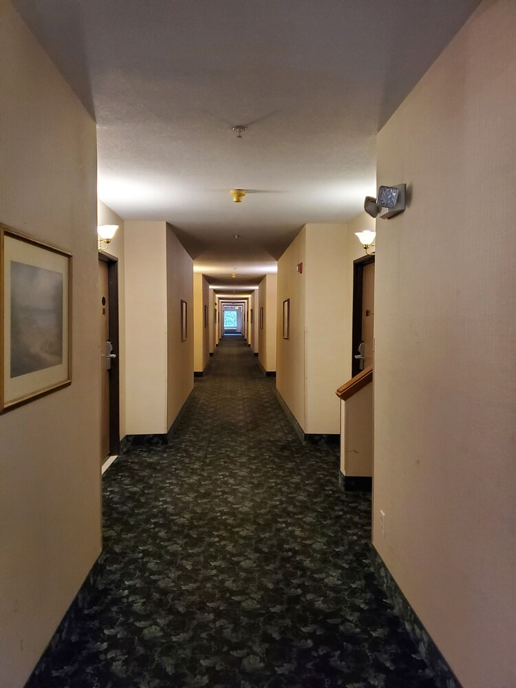 Gallery image of Rodeway Inn Bellingham