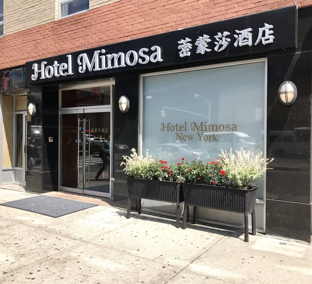 Gallery image of Hotel Mimosa