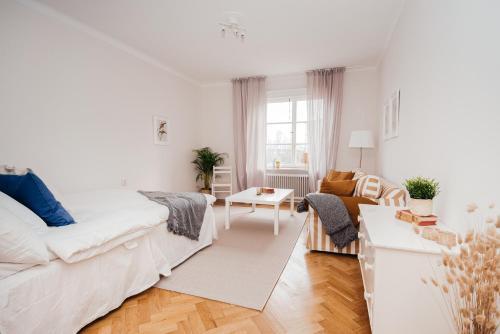 Modern Sofo Apartment