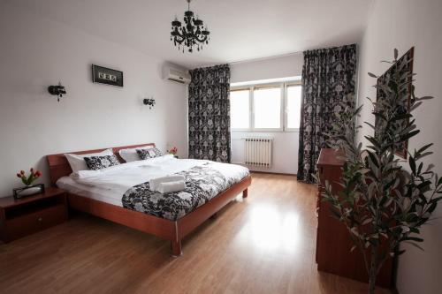 Next Apartments Coposu