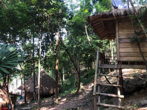 Jungle Bay Ecolodge