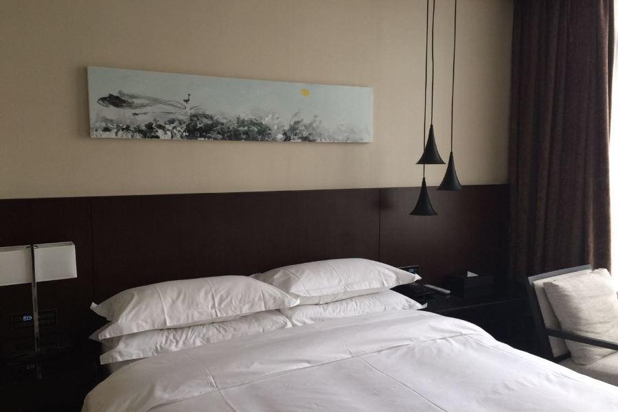 Fancy Hotel Shenzhen North Railway Station