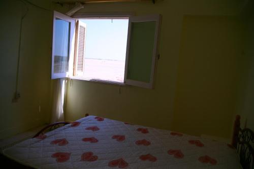 Economy Apartment for Rent