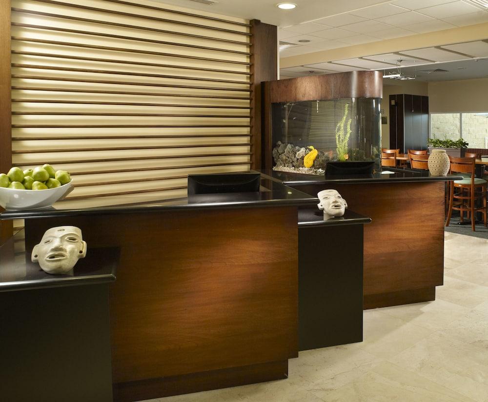 Gallery image of Fairfield Inn by Marriott Los Cabos