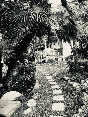 Under The Oaks Private Garden Family Dog Retreat