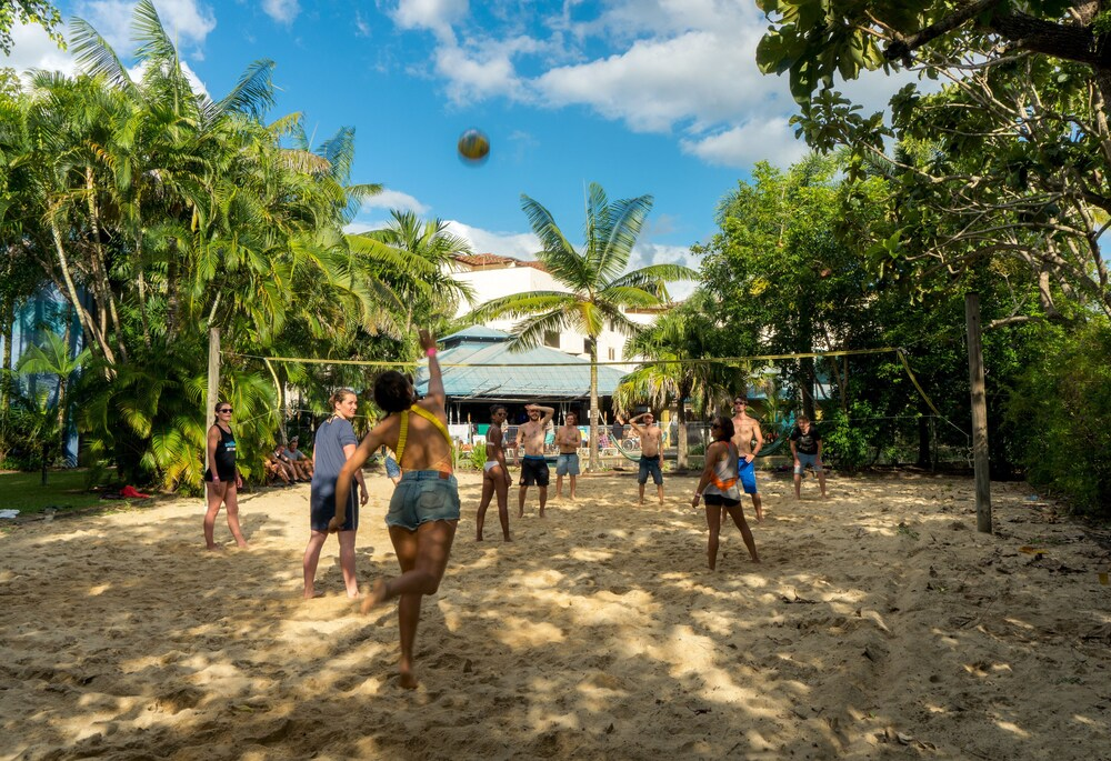 Gallery image of Summer House Backpackers Cairns