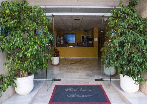 Hotel Carmen Almunecar - Almunecar