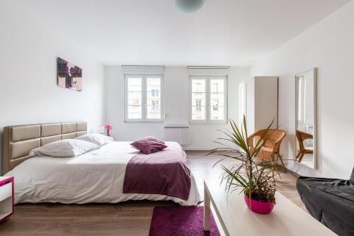 Appartement Camille