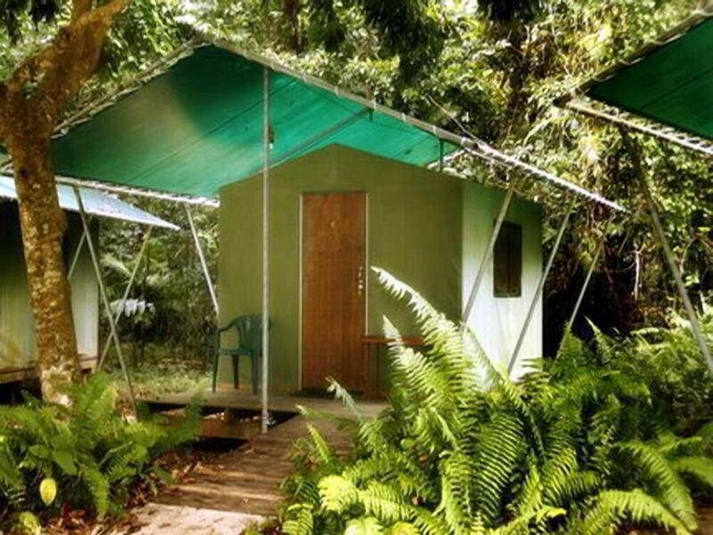 Gallery image of Jungle Lodge