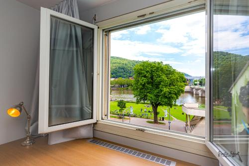 BS Neckar Apartment Heidelberg