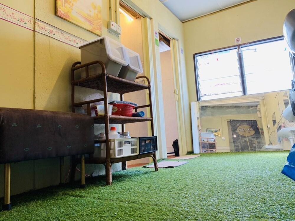 Gallery image of Cookoobird Home Hostel