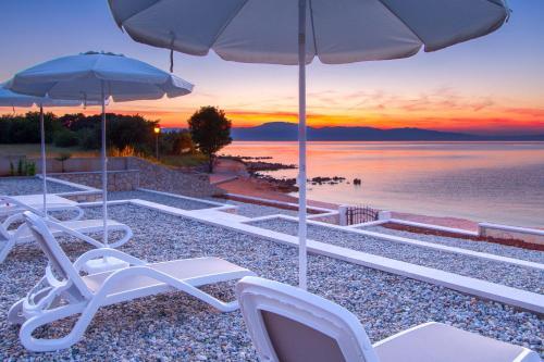 Luxury Apartments Villa Matea 1