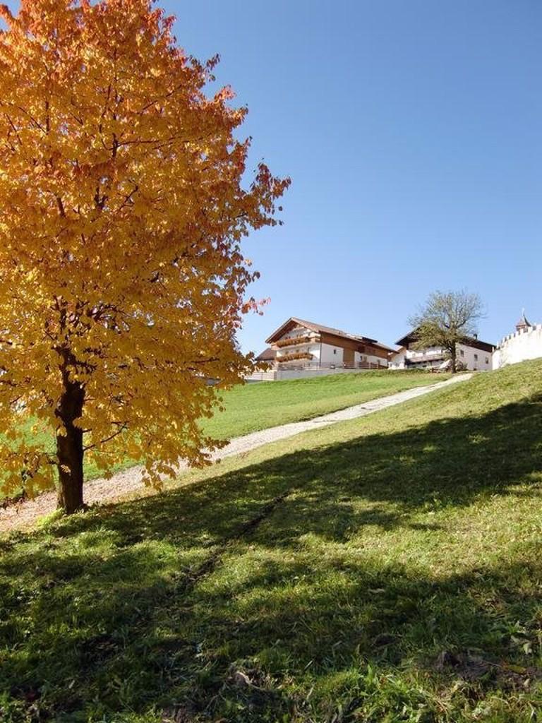 Gallery image of Der Brunnerhof