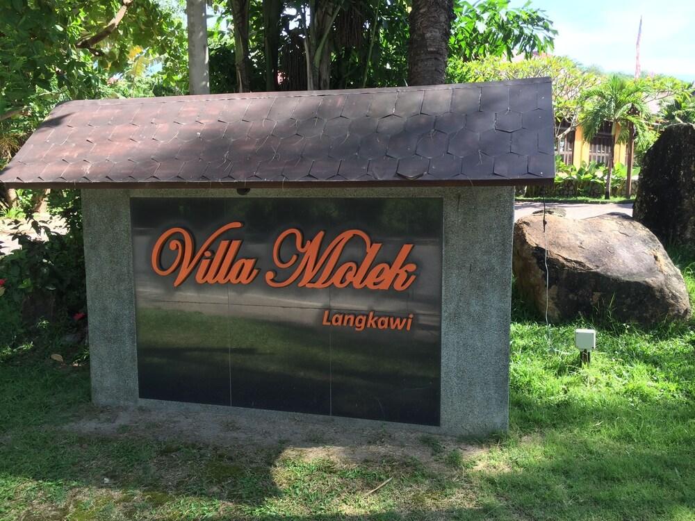 Gallery image of Villa Molek