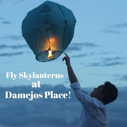 Damejos place