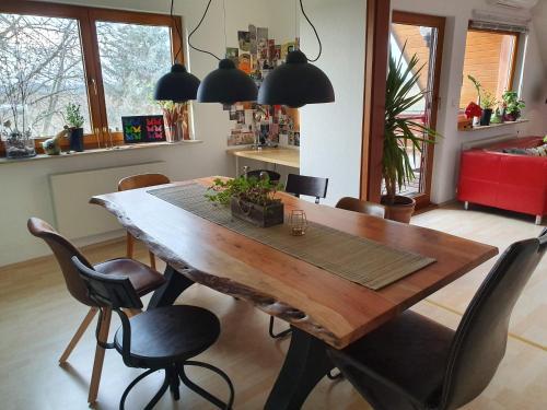 Familienfreundliches Dachgeschoss Apartment am Stadtrand von Leipzig