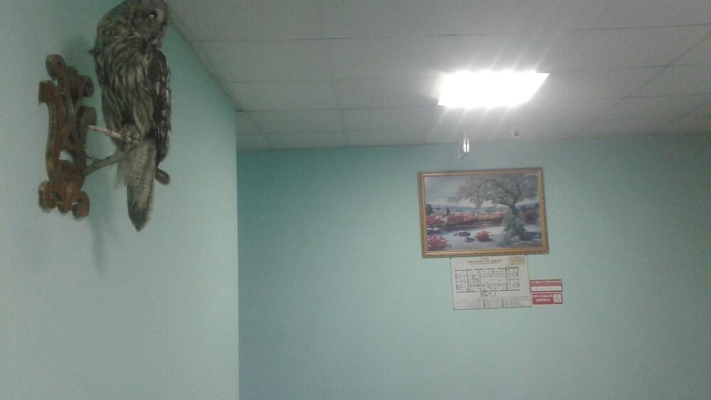 Gallery image of Neptun Hostel