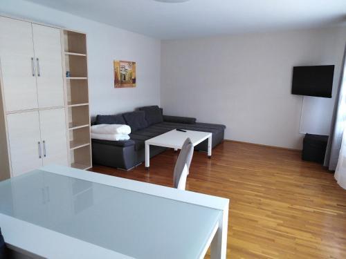 Ferienwohnung Apartment Aachen Nr 3