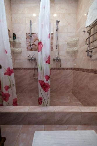 Gallery image of Hotel Samokovskaya