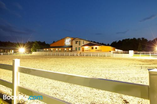 Gallery image of Master Horse Club Svojetice
