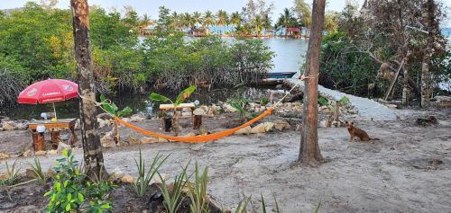 4k Camp Koh Rong