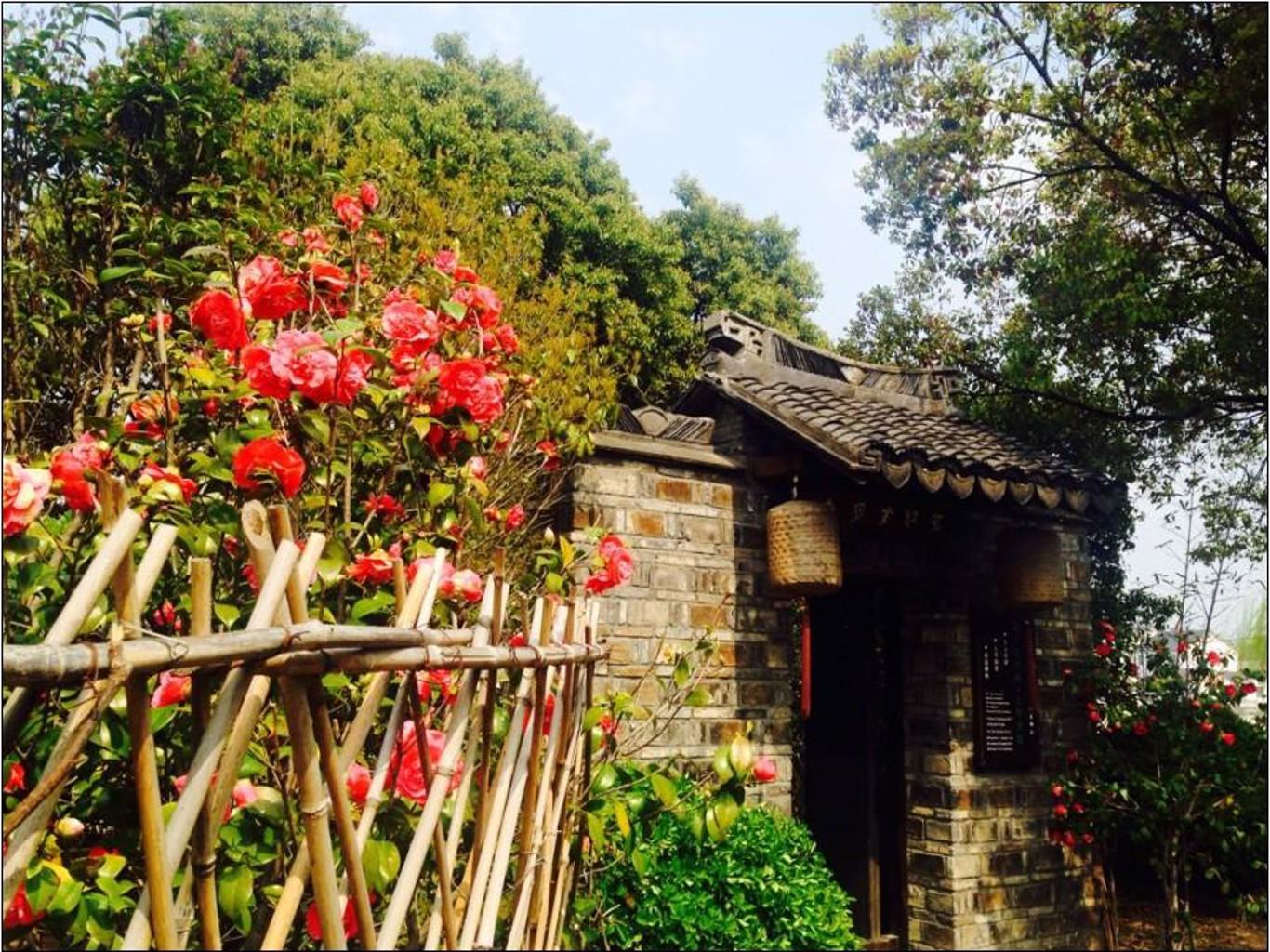 Moonlit Garden