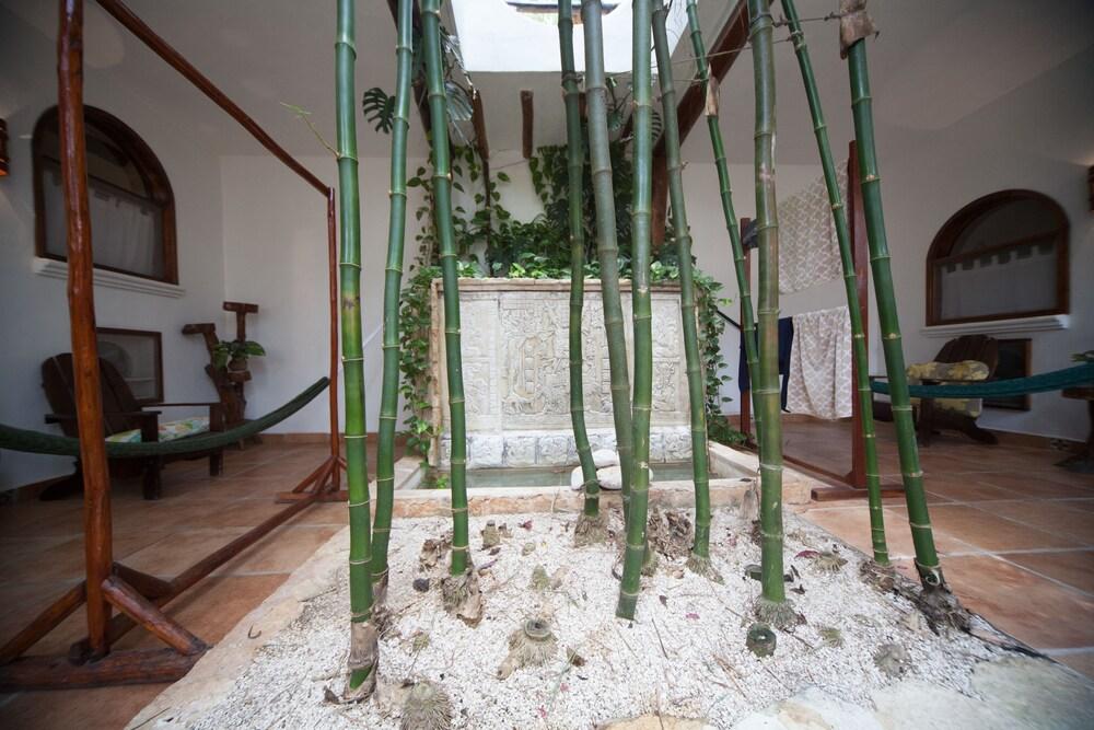 Gallery image of Posada Yum Kin