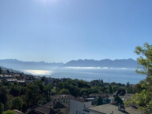 New Luxury Lake view Apartment Lausanne