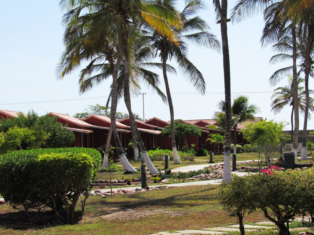 Gallery image of Hotel Coche Paradise