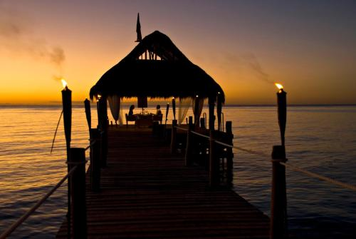 Secrets Aura Cozumel All Inclusive Adults Only