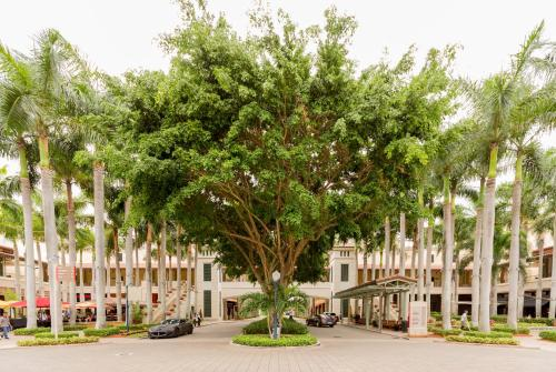 Pelican Residences in Coral Gables Walk to Merrick Park