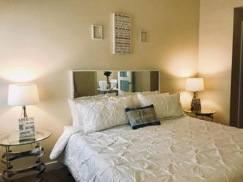 Luxury Rentals Downtown Houston
