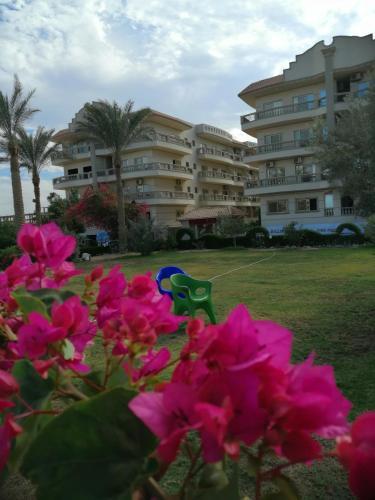 Nour Plaza Beach