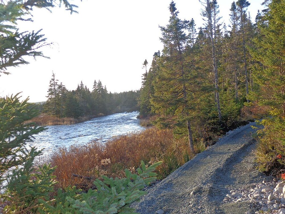 Gallery image of The Wilds at Salmonier River